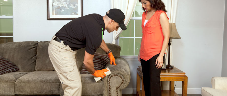Lancaster, CA carpet upholstery cleaning